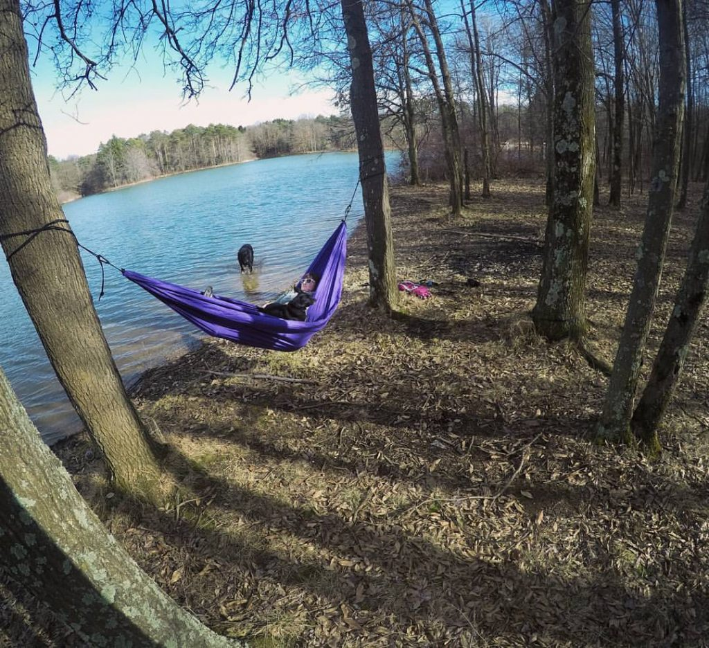 Hammock hangs at Yellow Creek State Park.